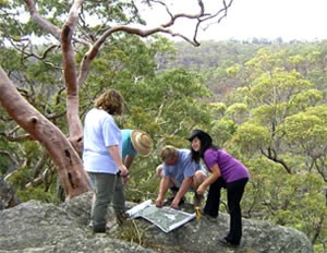 Image of people examining a map  while standing on a rock platform above a forest treed with eucalypts.